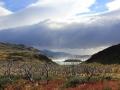 chile_patagonien_036