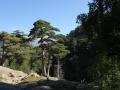 Korsika_2016_42