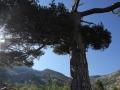 Korsika_2016_43