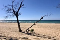 Mosambik Tofo
