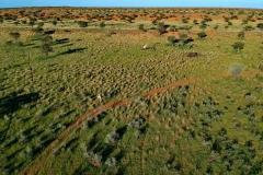 Namibia Kalahari
