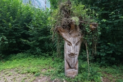 Triglav NP - Wanderung um den Bohinjsko jezero (See)