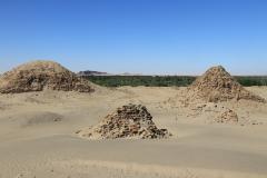 Sudan Nuri