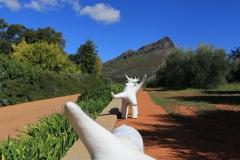 Südafrika Weinland