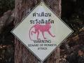 2016_Thailand_5